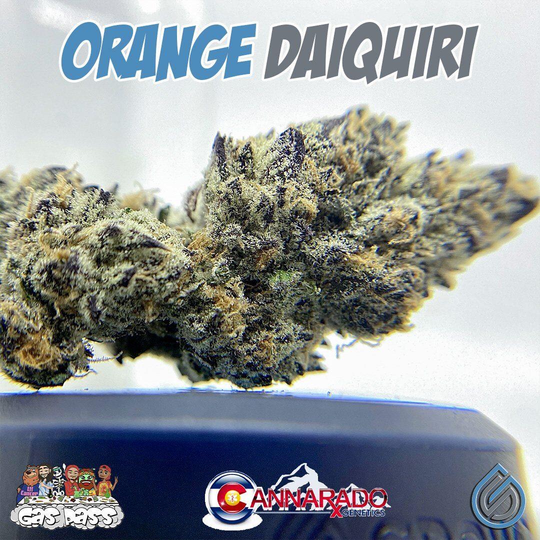 Orange Daiquiri